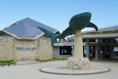 El acuario de Churaumi
