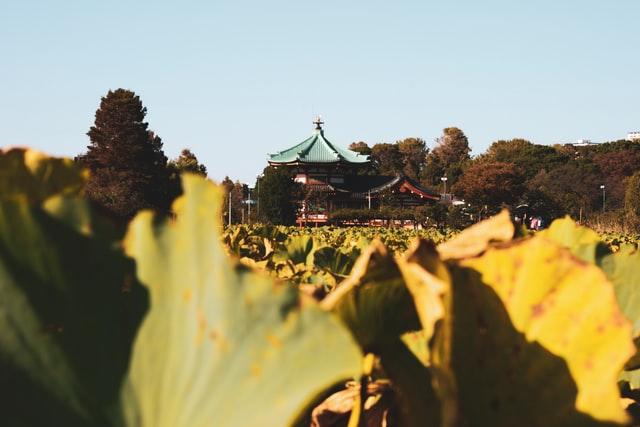 El parque Ueno en Tokio