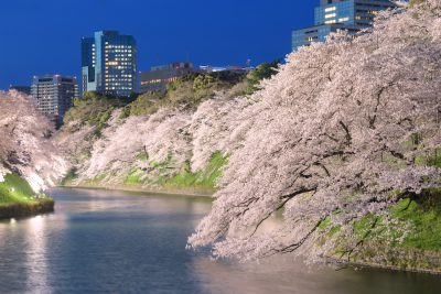Cuando viajar a Japón ?