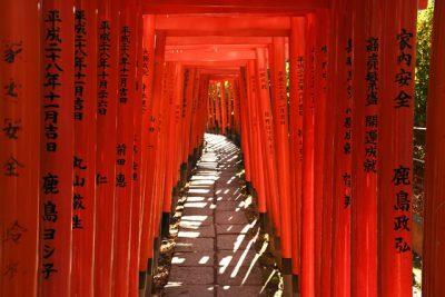 El precioso santuario Nezu en Tokio