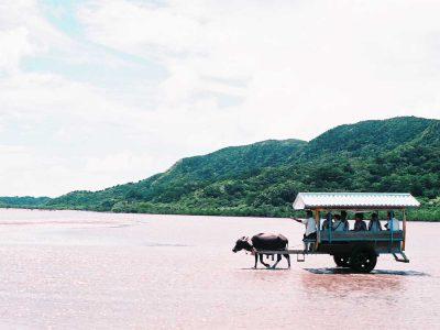 Isla de Iriomote
