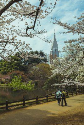 Parque nacional Shinjuku Gyoen