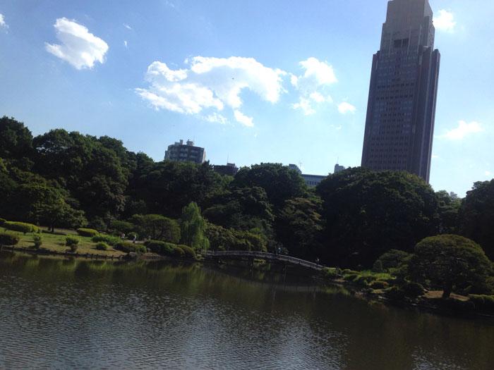 Video en Tokio : Shinjuku y Shibuya
