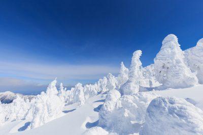 zao festival de nieve