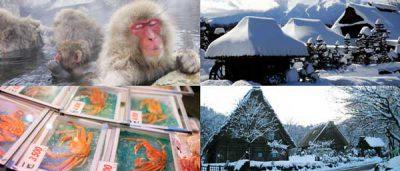 El Invierno en Japón (Fuyu)
