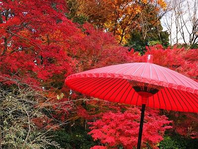 El otoño en Japón (Aki)