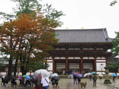 Templo Todaiji y los ciervos