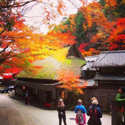 Consejo para Viajar a Japón