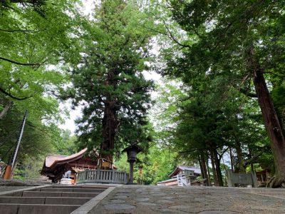Shinto en Japón